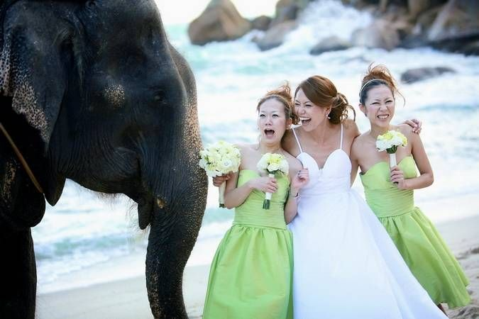 Phuket marriage proposal and wedding planner